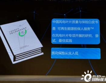 《中国风电叶片质量与保险研究白皮书》发布