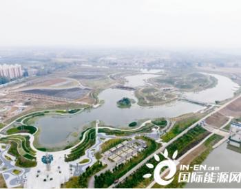 """河南汝南:""""污水坑""""变身城市湿地公园"""