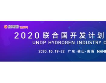 国内外大咖齐聚南海!2020联合国开发计划署氢能产业大会隆重召开