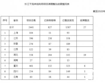 长江干流岸线利用项目清理整治进展情况通报