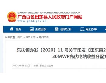 田东县2020年右江鱼梁库区里拉沟水面30MWP光伏电站收益分配方案