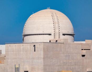 <em>田湾核电</em>1-5号机组寿期内累计发电量突破2500亿千瓦时!