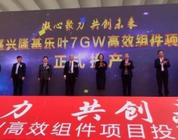 隆基股份嘉兴7GW光伏组件生产基地正式投产