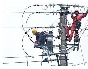 国网赣州市赣县区供电公司:差异化防雷改造 赋能坚强智能电网