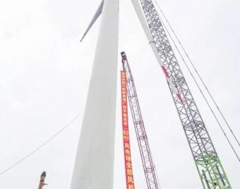 三峡新能源广西平南项目圆满完成全部风机吊装