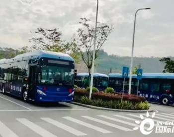 山东青岛美锦50辆氢能公交投运背后