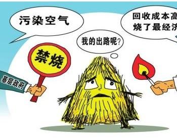 安徽铜陵:推动生物质节能生产线 让<em>企业</em>降本又环保