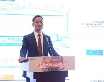 杨雷:碳中和,开创清洁能源革命新纪元