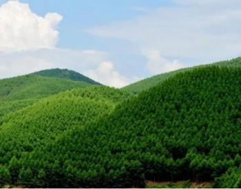 上海碳排放企业连续七年100%完成履约