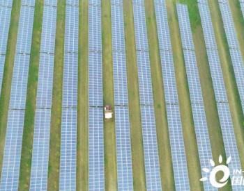 山东阳谷:光伏生态产业园一地多用促增收