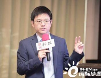 王敏:我国新能源的发展历程、挑战与改革展望