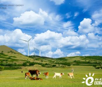 """""""碳约束""""时代,我们的能源系统如何""""绿色""""升级?"""