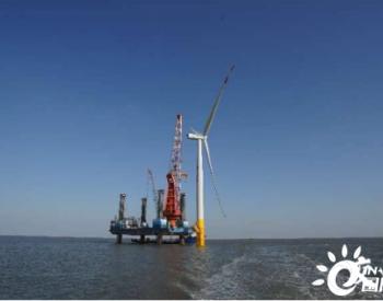 257噸!國內單體容量最大海上風電項目進入風機吊裝階段