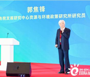 """郭焦锋:如何保持""""清洁低碳、智慧高效、经济"""