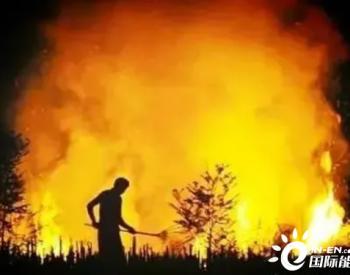 为什么要禁止焚烧秸秆,你知道吗?