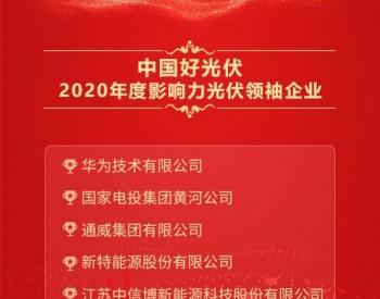 2020中国好光伏—光伏领袖企业奖排名