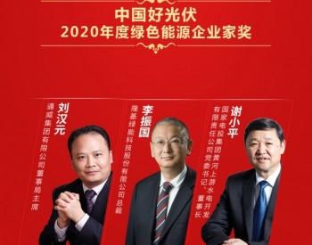 2020中国好光伏——绿色能源企业家奖