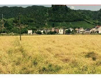安徽省发布农作物秸秆综合利用奖补资金管理办法,大力推动秸秆综合利用!
