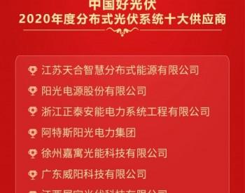2020中国好光伏——<em>分布式光伏系统</em>十大供应商