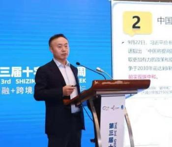 上海电力大学<em>施正荣</em>教授:实现碳中和目标的关键在于能源结构转型