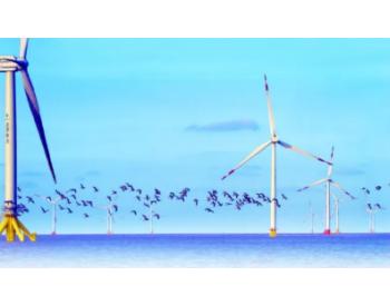 """江苏如东获得""""全国海上风电第一县""""称号!共计13项海上风电项目"""