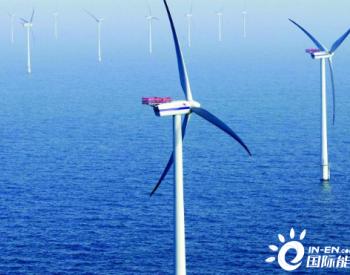"""""""十四五""""无法实现平价的海上风电该如何发展?"""