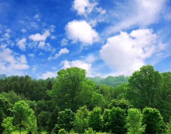 《<em>生态环境损害鉴定</em>评估技术指南》系列标准征求意见获反馈