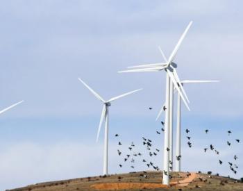 最新研究成果,可避免风电前期审批一大风险!