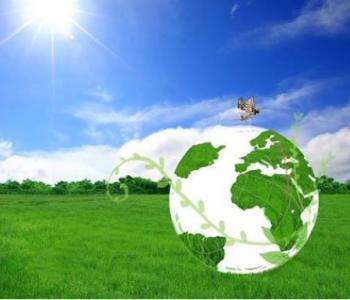"""低碳能源將成為""""十四五""""能源增量的主體"""