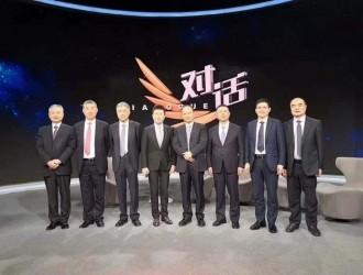 中国光伏:绝境中的逆袭