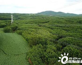 海南省域智能电网重点示范项目——洛基-头铺220千