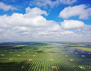 "RCEP签署铺就我国光伏""出海之路""""新趋势""力促全球<em>能源变革</em>"