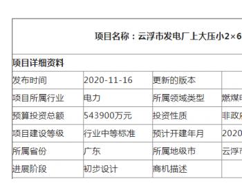 广东云浮市发电厂上大压小2×660MW机组项目(VIP)