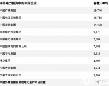 数据报告Top榜揭晓:投资海外发电项目排名前十的