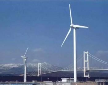 全国单体容量最大平原风电项目在河南濮阳投产
