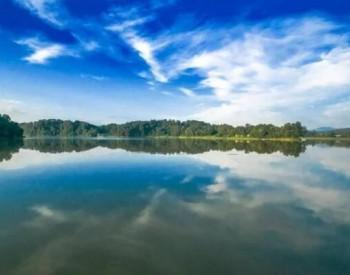 非水电消纳责任权重为12.5%!河南印发可再生能源