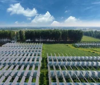 <em>特变电工</em>、上海电气等多家企业上榜能源局重大技术装备项目清单!