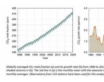 疫情导致全球碳排放量下降7%,但是温室气体浓度继续上升