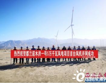 青海都蘭諾木洪一號50MW風電項目首臺風機成功并網