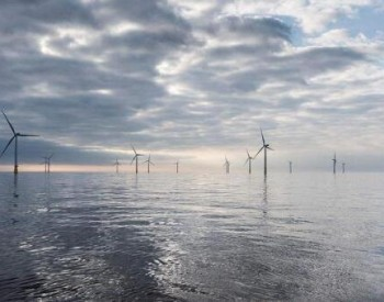 總投資3億元!廣東湛江將建海上風電裝備試驗場,研制浮式裝備!