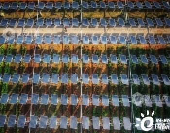 江西德兴市黄柏乡:光伏发电基地发电总量超过6600