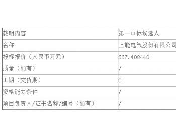 中标 | 国华投资公司2020年第一批光伏<em>并网逆变器</em>设备集中采购招标文件中标候选人公示