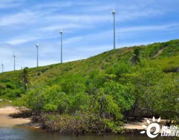 巴西东北部风力发电量达到9163兆瓦,打破单日纪录