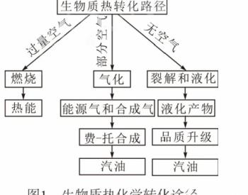 典型生物质能源的转化途径分析对比