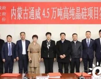 内蒙古通威4.5万吨<em>高纯晶硅</em>项目签约仪式成功举行