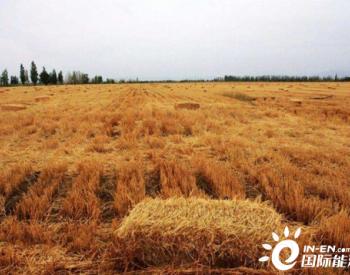 招标 | 重庆市长寿区农作物秸秆综合利编制采购方案