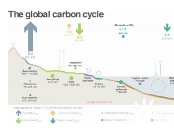 报告:疫情将致2020年全球能源相关碳排放降7%,美欧降幅逾11%