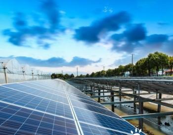 80MW!广东肇庆建设投资3.2亿元的光伏发电站,面积达106万平方米