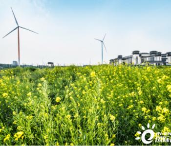 """""""十四五""""我国能源结构将持续向绿色低碳转型"""