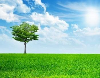 《全球生态环境遥感监测2020年度报告》发布 20年间全球城市人均绿地空间面积扩大七成
